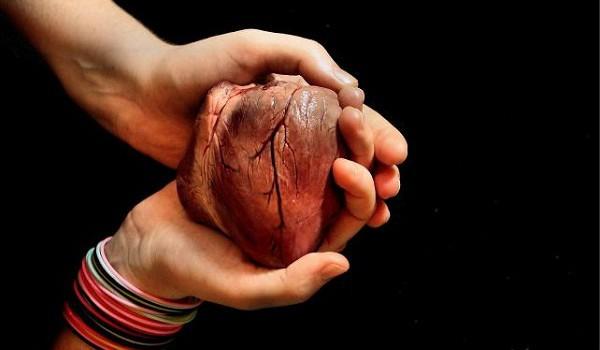 Bądź darem, czyli ABC transplantacji